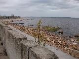 Гранитные набережные Санкт-Петербурга...